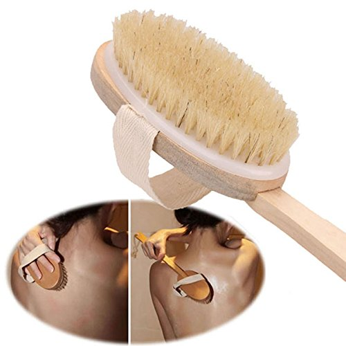 Natural Long Wooden Bristle Body Brush Massager Bath Shower Back Spa Scrubber