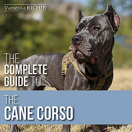 The Complete Guide to the Cane Corso Titelbild