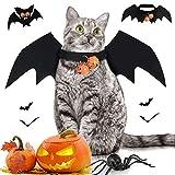 Costume da animale domestico di Halloween, costumi da pipistrello con ali di pipistrello, con 2 pezzi di campana di zucca, costumi da pipistrello cane gatto, costume da cane di Halloween