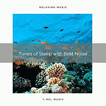 Tunes of Sleep with Best Noise