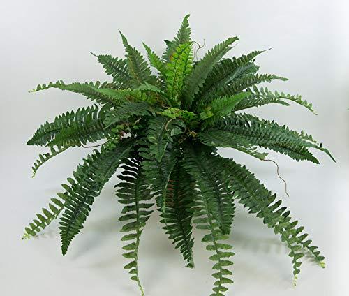 Seidenblumen Roß Boston Farn 80x45cm -ohne Topf- CG künstlicher Farnbusch Kunstpflanzen Bostonfarn Dekofarn