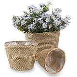 DeeCoo Handmade Seagrass Planter