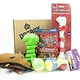 Dogbox Boutique - Caja de regalo para perros de Navidad, ideal para cumpleaños, Navidad o un regalo mensual – explosión de golosinas, juguetes y accesorios