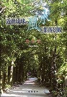 近世琉球の風水と集落景観 (沖縄学術研究双書)