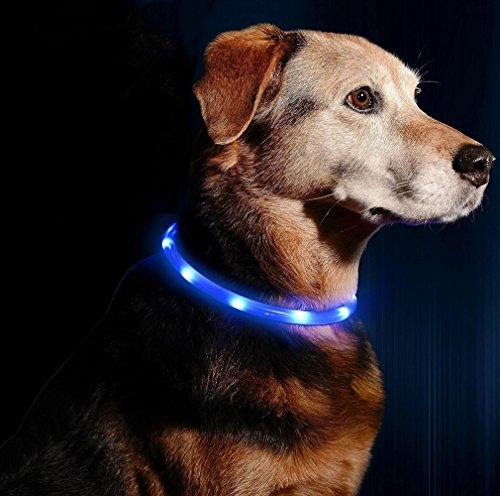 Led Hundehalsband Blinkende Leuchthalsband USB wiederaufladbar - Längenverstellbarer Hund und Katze Sicherheits Kragen (50cm, Blau(Licht Gürtel))