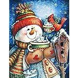 5DDiamondPainting Sombrero muñeco de nieve animales pájaro casa 5D Kit de pintura de diamante,Bordado de punto de cruz de diamantes de imitación Artesanía30x40 cm(Sin marco)