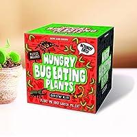 Gift Republic - Sow And Grow, Kit para el cultivo de plantas carnívoras