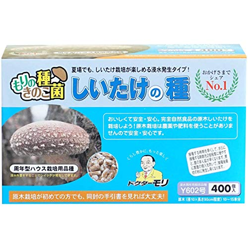 椎茸種駒 【しいたけ夏菌種駒400個】