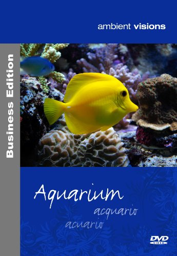 ambient visions Aquarium Business Edition