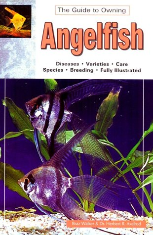 The Guide to Owning Angelfish: Disease, Varieties, Care, Species, Breeding