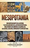 Mesopotamia: Una guía fascinante de la historia y las civilizaciones de la antigua Mesopotamia, incluyendo a los sumerios, Gilgamesh, Ur, los asirios, Babilonia, Hammurabi y el Imperio persa