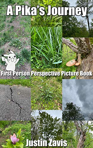 A Pika's Journey: First Person Perspective Picture Book (Realistic Children's Story Pika Series 1) (English Edition)