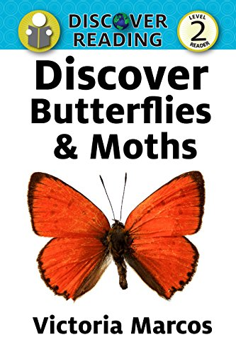 Discover Butterflies & Moths: Level 2 Reader (Discover Reading) (English Edition)