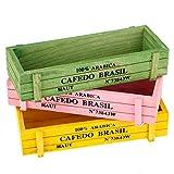 Maceta de madera, 3 piezas Decoración de escritorio de oficina en casa Maceta de plantas Suculenta Cactus Bonsai Jardinera Herramientas de jardinería Caja de almacenamiento Macetas de madera