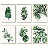 Green Botanical Wall Art Print Set von 6 natürlichen