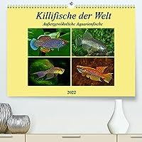 Killifische der WeltCH-Version (Premium, hochwertiger DIN A2 Wandkalender 2022, Kunstdruck in Hochglanz): Farbenpraechtige, aussergewoehnliche Aquarienfische ueberraschen Experten und Laien. (Monatskalender, 14 Seiten )