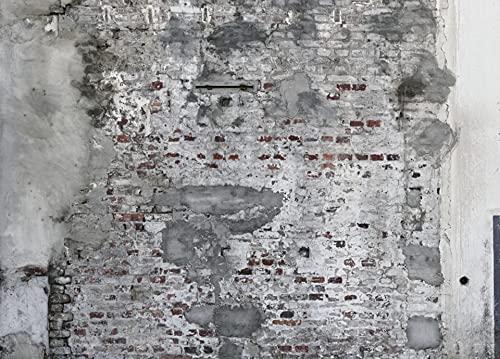 rasch Tapete 445404 - Fototapete auf Vlies mit rustikaler Steinmauer und Betonoptik in Grau und Braun - 3,00m x 4,18m (L x B)