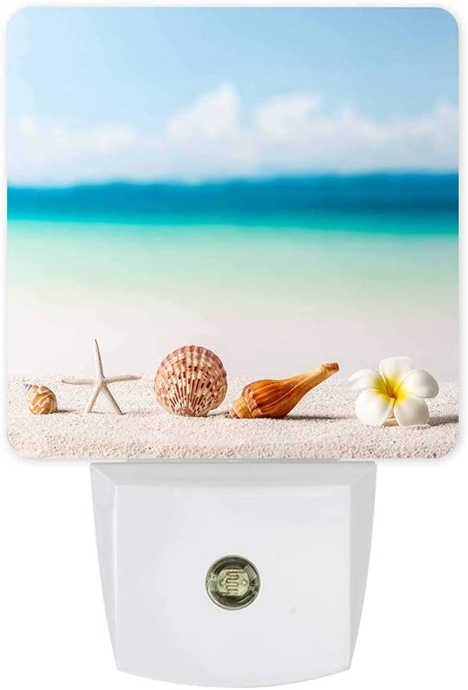 Night Light Plug-in - Tropical Beach Conch Flower Starfish Shell Excellence excellence