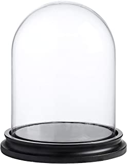 Whole Housewares Decorative Clear Glass Dome/Tabletop Centerpiece Cloche Bell Jar Display Case with Black MDF Base, 6