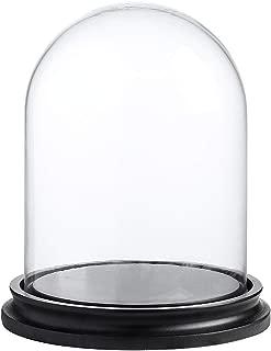 6 glass display case