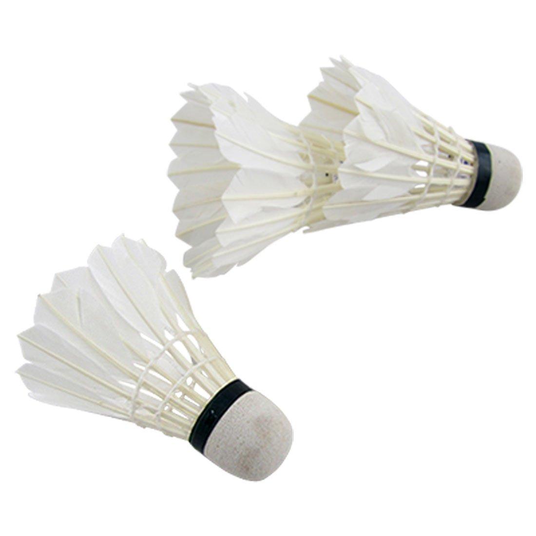 3Pcs Pluma Blanca Espuma Volantes Badminton Juego De Pelota ...