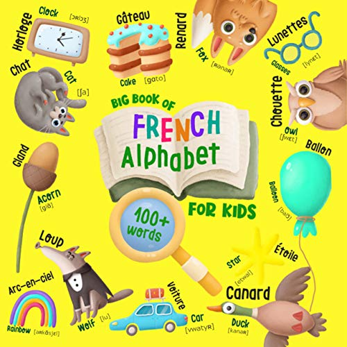 Big Book of French Alphabet for Kids: English-French Book for Kids - 100+ Words with Illustrations, Translation, and Pronunciation (English Edition)