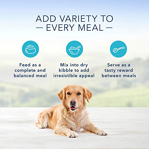 Dog | Blue Buffalo Homestyle Recipe Natural Adult Wet Dog Food Variety Pack, Chicken & Beef 12.5-oz can (8 count- 4 of each flavor), Gym exercise ab workouts - shap2.com