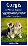 Corgis for Absolute Beginners: The Concise Guide on Buying, Grooming,...