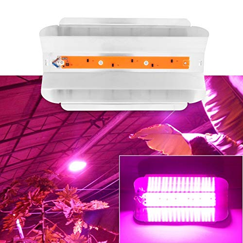 Delaman Grow Light Plantas de Interior COB LED Growing Light Full Spectrum Planta Lámpara de Cultivo para Plantas Flor Vegetales (Capacidad : 30W)