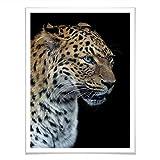 Poster Dambreville - Neugieriger Jaguar Fotografie Panther