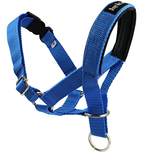 Dog Head Collar Halter Blue 5 Sizes (L: 10.25