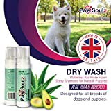 Paw Solez Avocado Dry Dog Shampoo