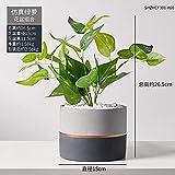 afbaby Planta de Flores Artificiales Planta Verde Adornos en macetas Piso Maceta decoración Creativa Tortuga nórdica Espalda Hoja Carne IKEA Bonsai