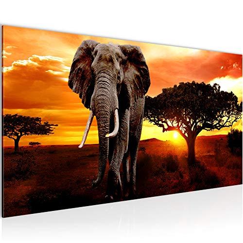 Bilder Afrika Elefant Wandbild 100 x 40 cm Vlies - Leinwand Bild XXL Format Wandbilder Wohnung Deko Kunstdrucke - MADE IN GERMANY - Fertig zum Aufhängen 001212a