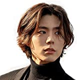 H&Bwig Men Wigs Short Brown Wig Male Guy Layered Middle Part Hair Daily Costume Cosplay Anime Party