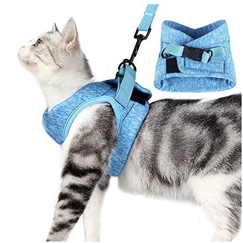 FENRIR Juego de arnés y Correa para Gatos, arnés de Chaleco Ajustable para Gatos pequeños a Prueba de Escape para Caminar al Aire Libre (Small (Chest 9'-11'))