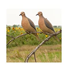 Pinch-clip attachment System Allows you to place decoys on fence lines, tree limbs, wires or Dove stands Ultra-realistic carvings and paint schemes Incredible durability and lightweight Strong and long lasting