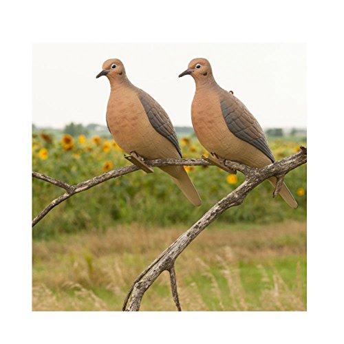 Avery Hunting Gear Mourning Doves (1/2 Dozen)