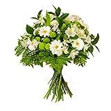 Flores AVRIL ofrece: ramo de flores naturales y frescas entregadas a domicilio, conteniendo 6 gerbera mini blanca, 5 crisantemo verde, 5 astromelia blanca, 3 statice blanco y verde variado
