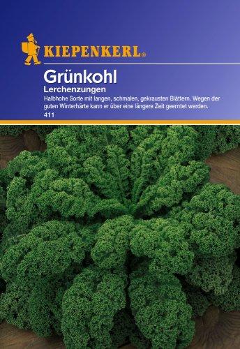 Sperli 411 Gemüsesamen, grünkohl Lerchenzungen, grün