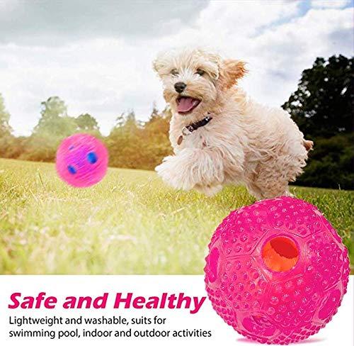 TERRA Juguete Interactivo para Perros IQ Treat Ball Juguetes ...