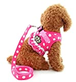 very cute small dog padded harness with leash - pink or black with dots