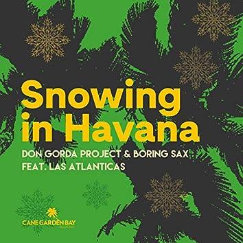 Snowing in Havana