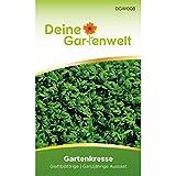 Kresse Samen (Glattblättrige Gartenkresse) | Kressesamen | Saatgut für Kresse-Pflanzen | Kräutersamen