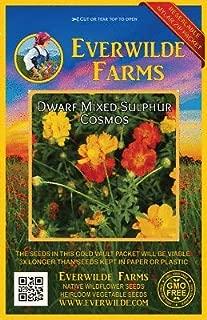 1 Oz Dwarf Mixed Sulphur Cosmos Wildflower Seeds - Everwilde Farms Mylar Packet