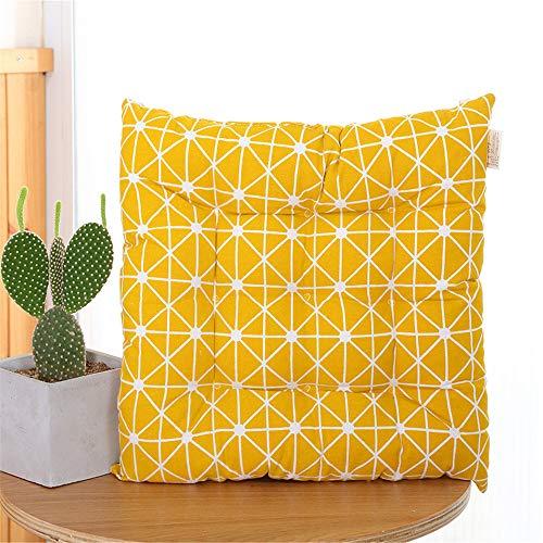 WATSON DAN Lot de 2 coussins de chaise - Pour l'intérieur et l'extérieur - Coussins épais - Idéal pour la maison et le jardin - 40 x 40 cm
