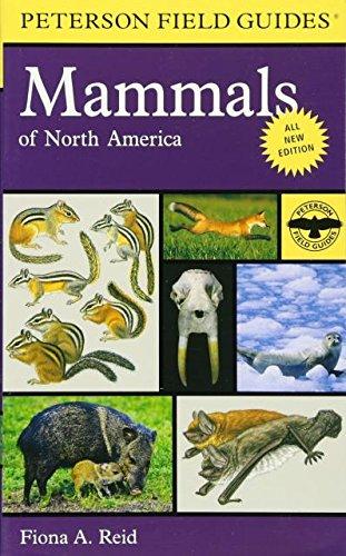 Mammal Field Guides