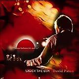 Songtexte von David Paton - Under the Sun
