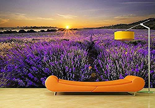 ZZXIAO Sonnenuntergang über Lavendelfeld selbstklebenden Vinyl-Wandaufkleber Tapetenkunst-Wandmalerei-Wohnz wandpapier fototapete 3d effekt tapete Wohnzimmer Schlafzimmer Hintergrundbild-300cm×210cm