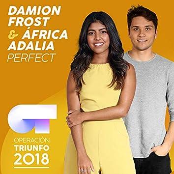 Perfect (Operación Triunfo 2018)